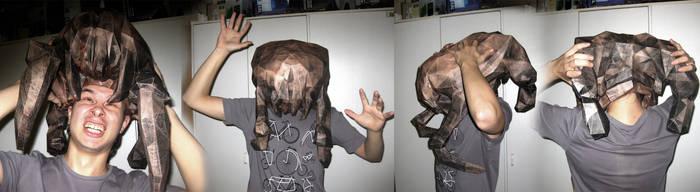 HeadCrab Paper by dekonz