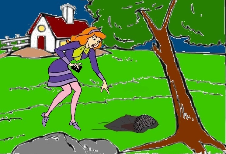 The Mossy transformation of Daphne Blake 1 by Alonbok77 on