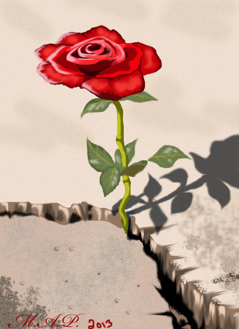 The Rose That Grew From Concrete By Michaelandr3 On Deviantart