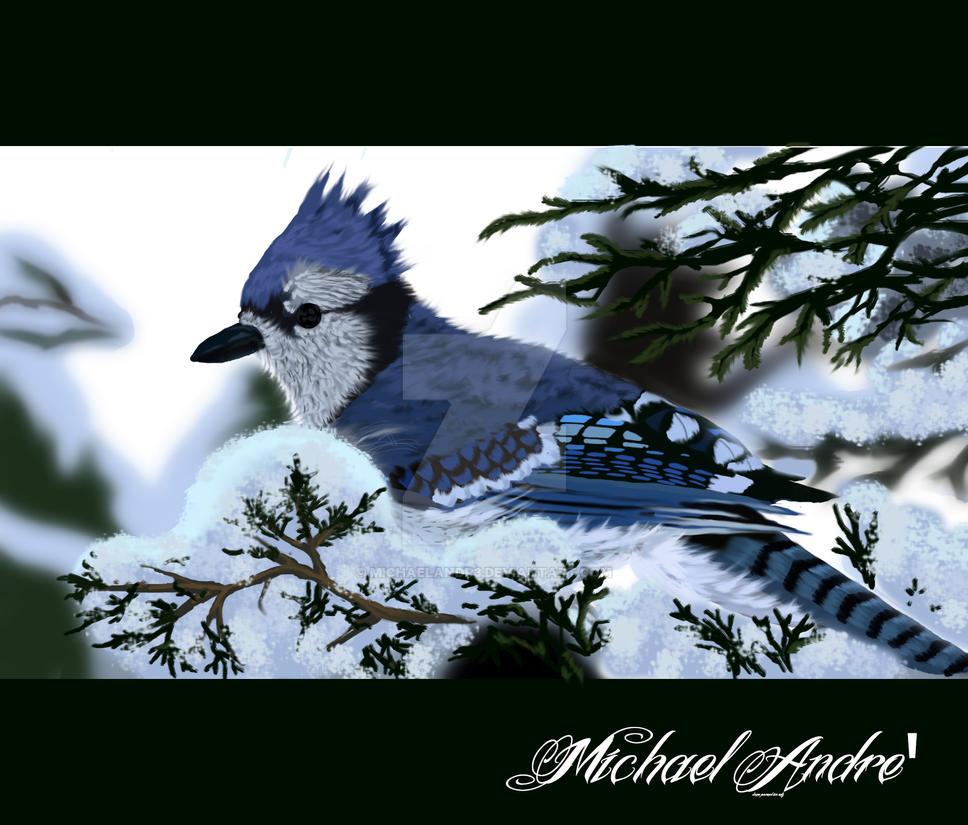 Bluejay2 by michaelAndr3