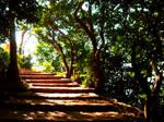 Mountain Steps