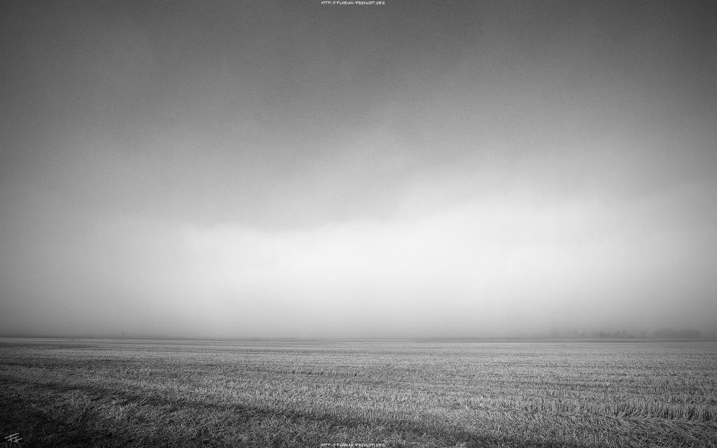 foggy morning 2560x1920 by hermik