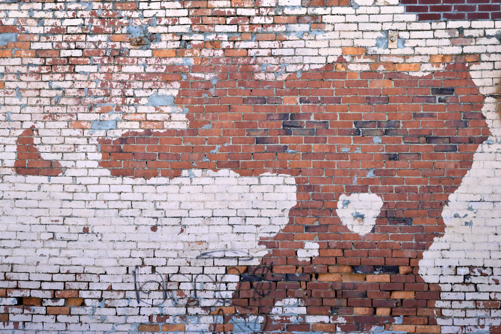 Grunge-wall-2287689 by licantroppus