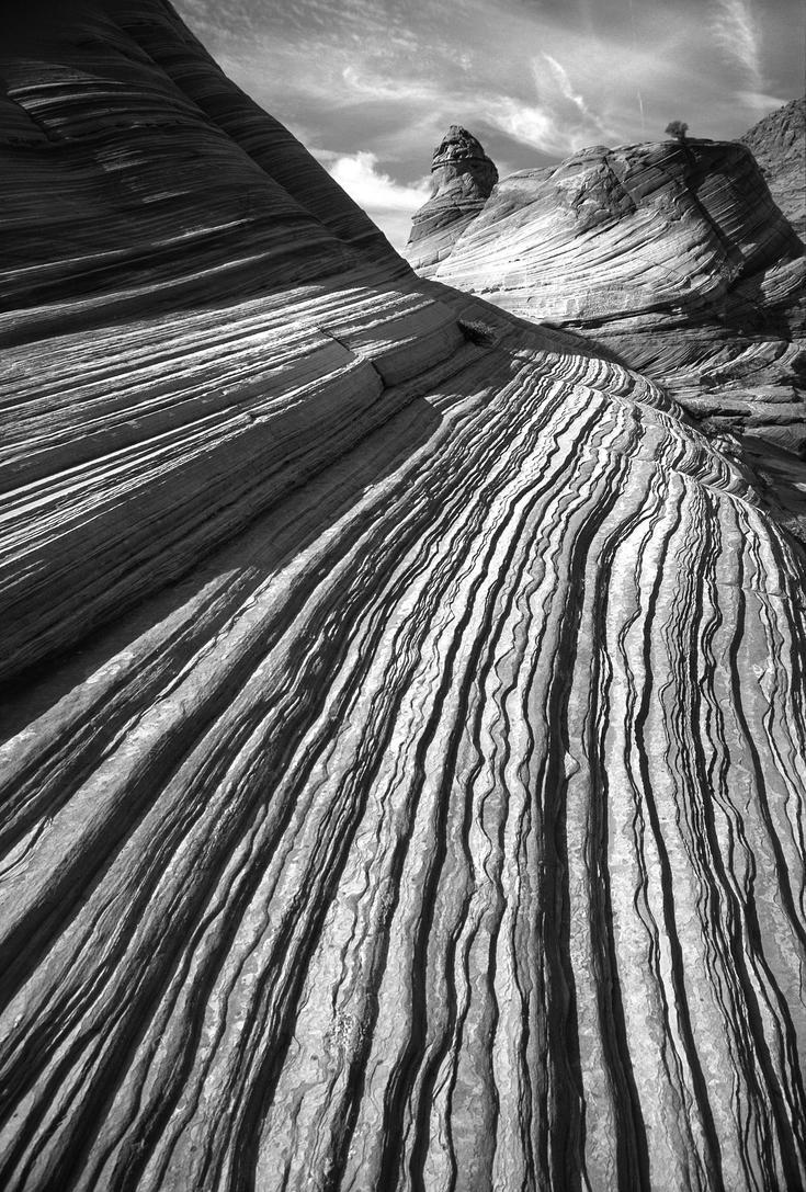 Desert-1853127 by licantroppus