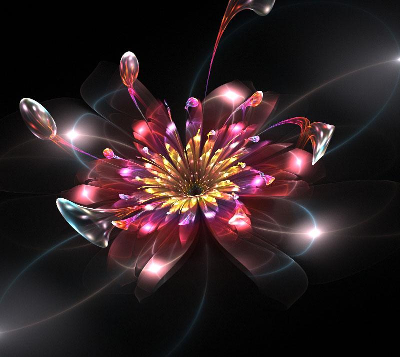 Flowers. By Iwuchska On DeviantArt