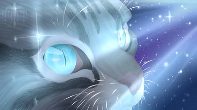 Cartoonish Cat Eyes
