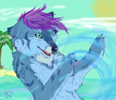 sea wolf play