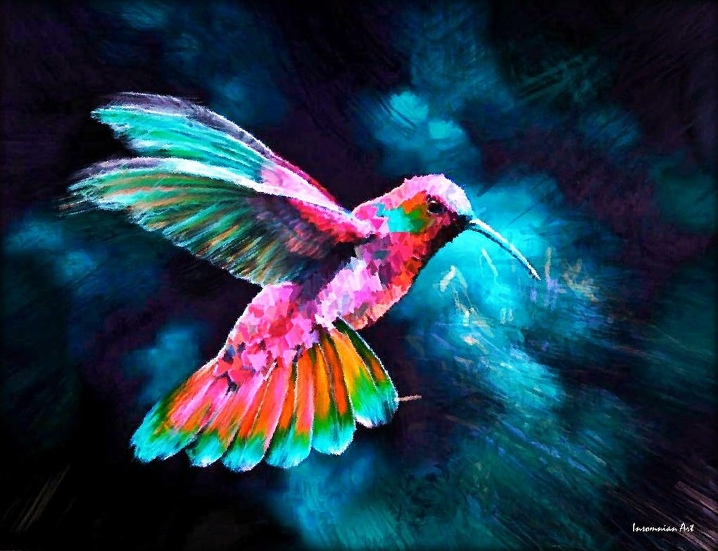 Colorful hummingbirds flying - photo#21