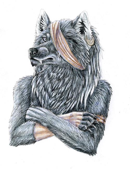 Scarred Wolf Bust by autumnjaguar on deviantART