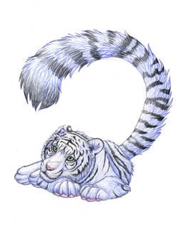 Resting Fluffy Tiger