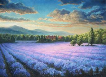 Lavender field by Irbeus