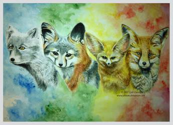 The Fox Seasons by Olvium