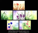 Field of Flowers Series