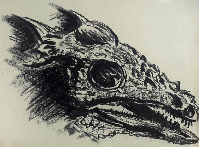 Stygimoloch Spinifer - Sketch by Olvium on DeviantArt