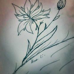random flower by SnivyController