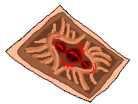 Xedralkana: Bronze Soul Card by Asoq