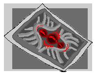 Xedralkana: Silver Soul Card by Asoq