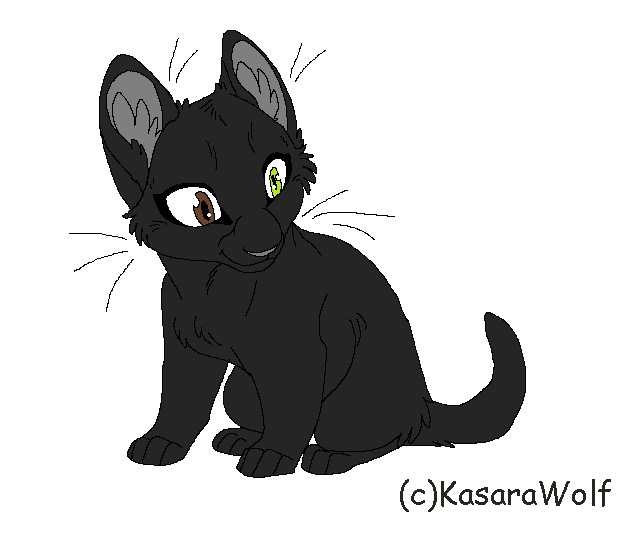 Warrior Cats Kit To Leader Bloodclan: EbonyKit My Warrior Cats OC. LineArt By KasaraWolf By