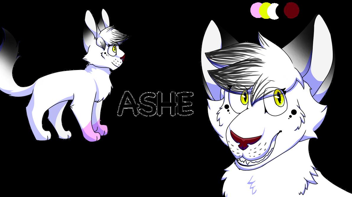 Ashe ref sheet + bio!  by cookiecrumbfnaf