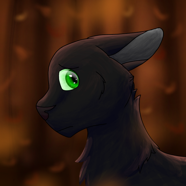 Ravenpaw by cookiecrumbfnaf