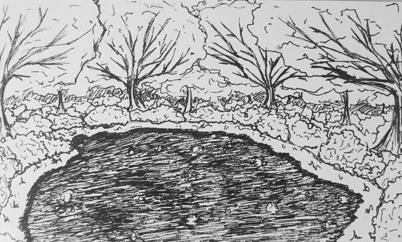 OSAC | Eye of Heaven Pen Sketch by DentistChicken