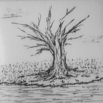 Small Tree Sketch by DentistChicken