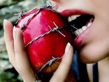 Le premier fruit..