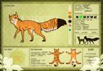 -WVS- Tigerburst   Heatherclan Warrior