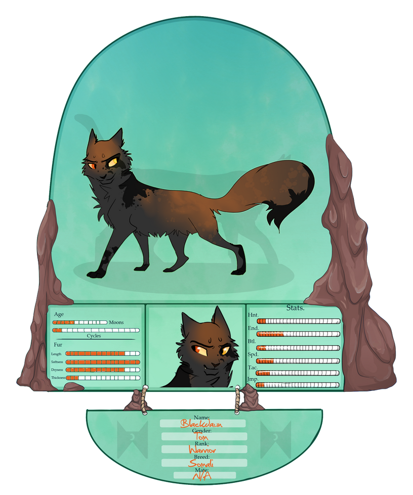 -tDE- Blackdawn Skyclan Warrior by Allizia