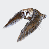 Augmented owl 02