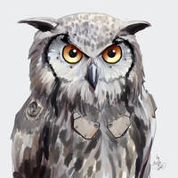 Augmented owl 04