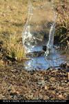 Splash Stock 01