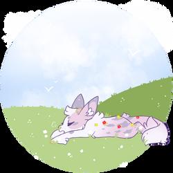 [p] spring sprung