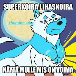 koirasarjassa thunder blue