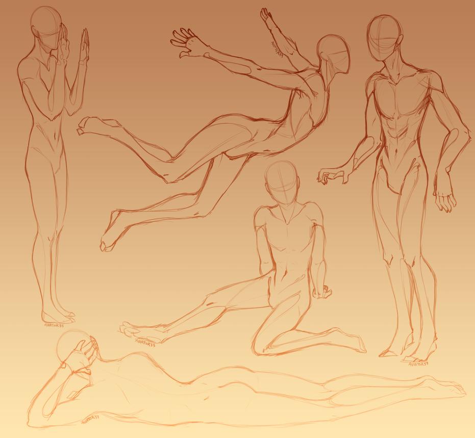 Anatomy Study Human Men by Hauket on DeviantArt
