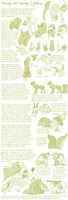Species Anatomy Tut/Guide