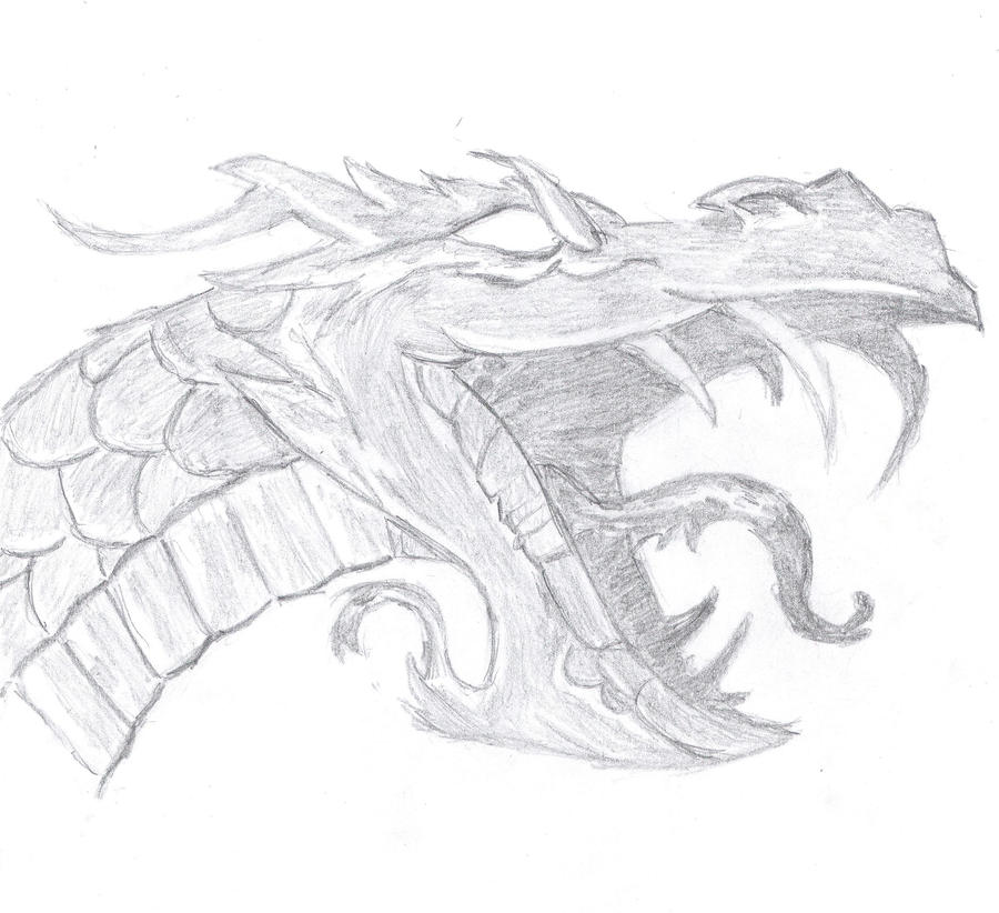 Best 25 Dragon drawings ideas on Pinterest  Awesome