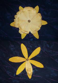 Flower Calender