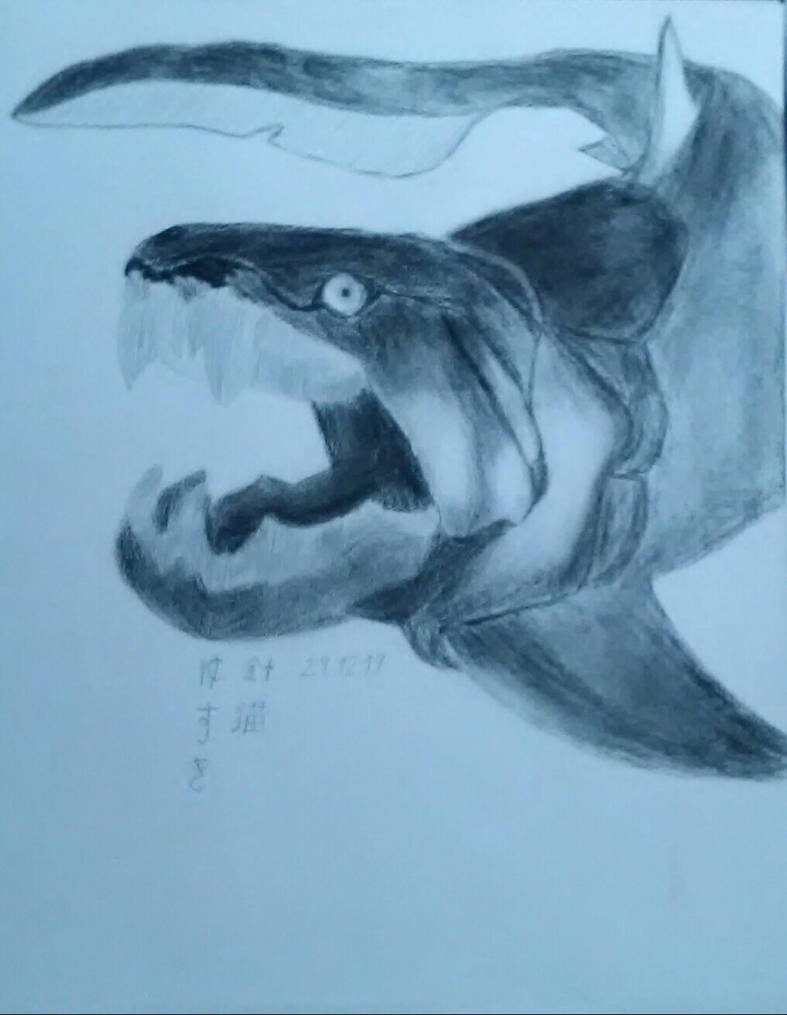 Dunkleosteus charcoal drawing