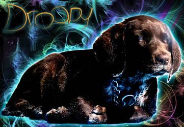 My dog by Ma4nNi