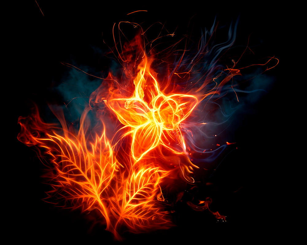 Fire Flower by Ma4nNi