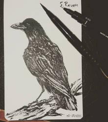 Inktober 2021 Day 5 : Crow