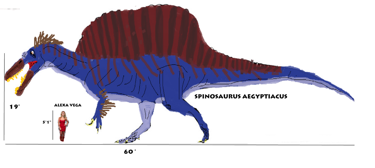 Spinosaurus size comparison to an actress. by Vespisaurus ...