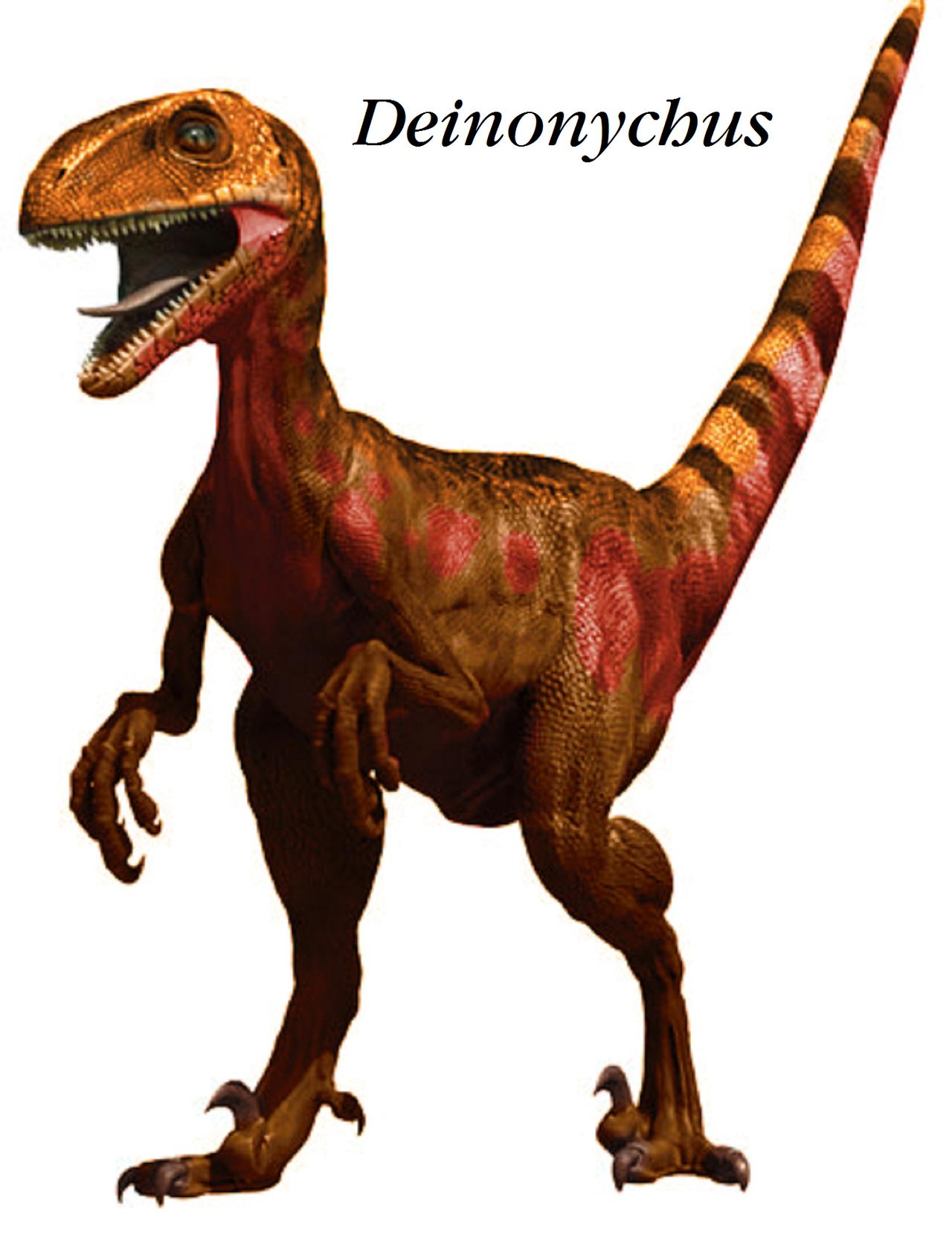 dinosaur train ankylosaurus - photo #37