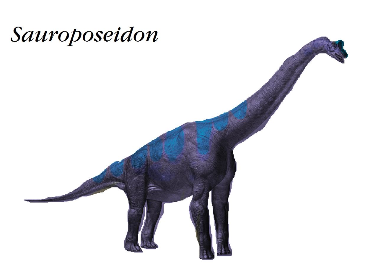 Sauroposeidon Dinosaur Train   www.pixshark.com - Images ...