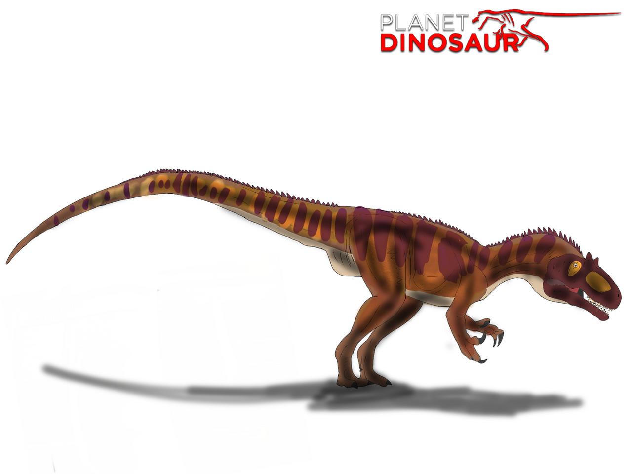 Planet Dinosaur Allosa...