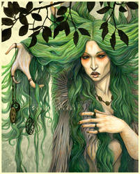 The Wood Witch