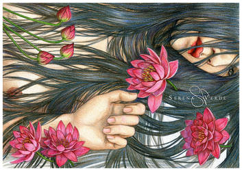 Lotus by SerenaVerdeArt