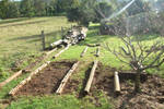 new garden beds