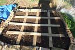 Garden Bed 2 Shot 2